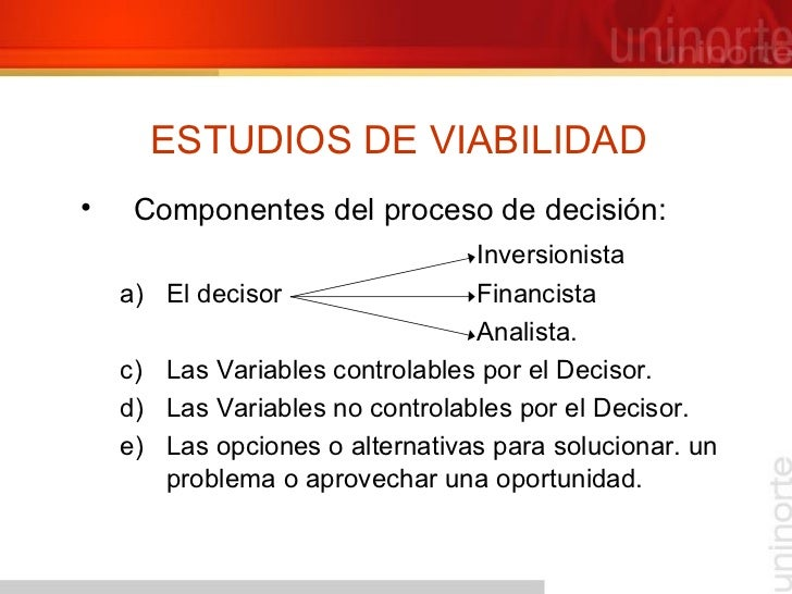 ESTUDIOS DE VIABILIDAD <ul><li>Componentes del proceso de decisión: </li></ul><ul><li>Inversionista </li></ul><ul><ul><li>...