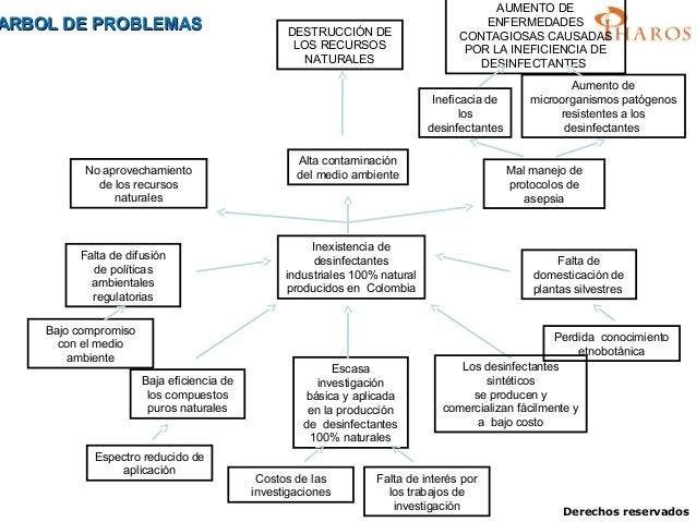 Formulaci n de proyectos de investigacion for Investigacion de arboles