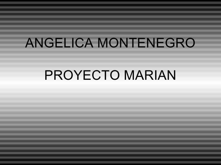 ANGELICA MONTENEGRO PROYECTO MARIAN