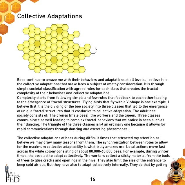 16 Collective Adaptations Bees continue to amaze me with their behaviors and adaptations at all levels. I believe it is th...