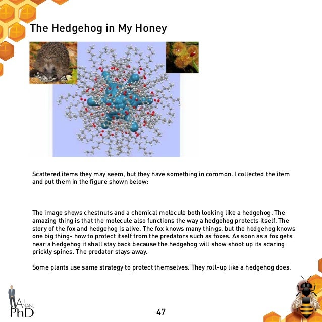 47 The Hedgehog in My Honey Scattered items they may seem, but they have something in common. I collected the item and put...