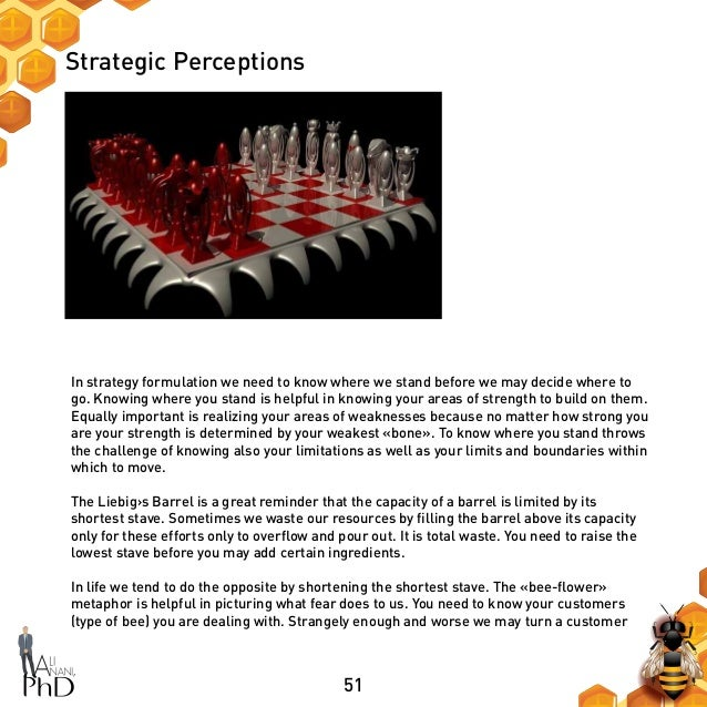 51 Strategic Perceptions In strategy formulation we need to know where we stand before we may decide where to go. Knowing ...