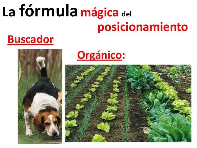 La fórmula mágica del               posicionamientoBuscador            Orgánico: