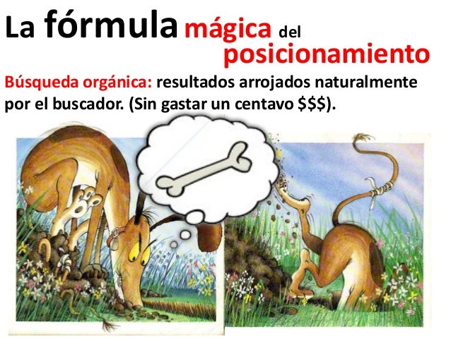 La fórmula mágica del                           posicionamientoBúsqueda orgánica: resultados arrojados naturalmentepor el ...