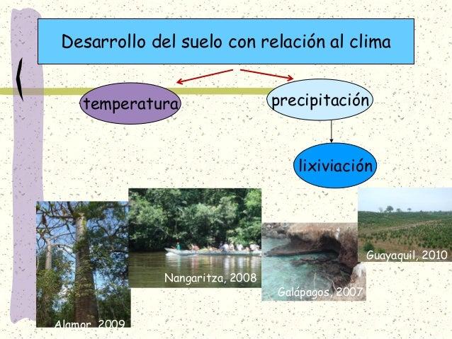 foro 1 la importancia del suelo1