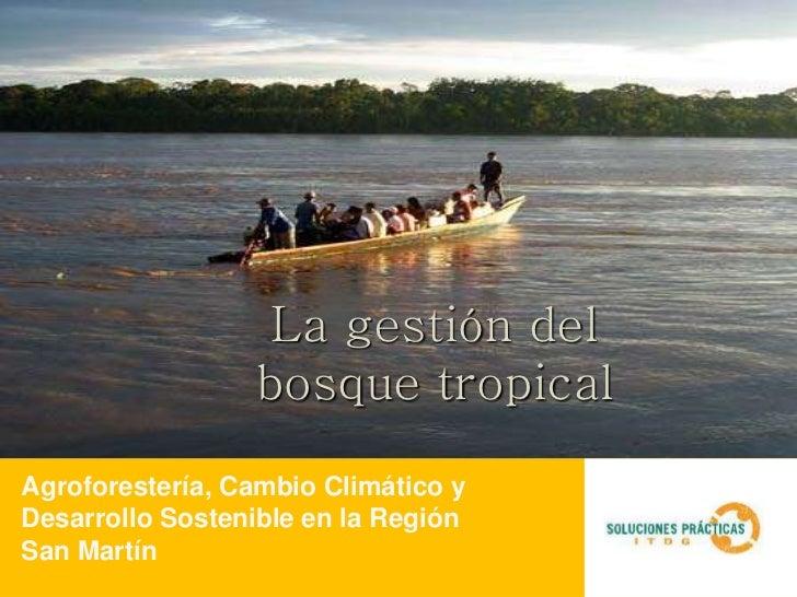 La gestión del                 bosque tropicalAgroforestería, Cambio Climático yDesarrollo Sostenible en la RegiónSan Martín