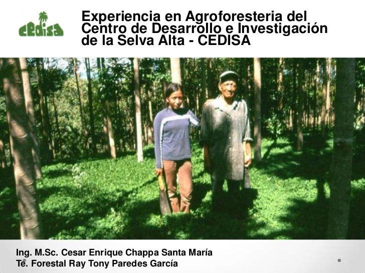 Experiencia en Agroforesteria del              Centro de Desarrollo e Investigación              de la Selva Alta - CEDISA...