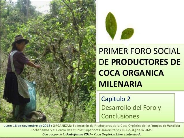 PRIMER FORO SOCIAL DE PRODUCTORES DE COCA ORGANICA MILENARIA Capitulo 2 Desarrollo del Foro y Conclusiones Lunes 18 de nov...