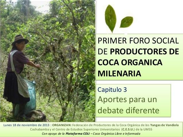 PRIMER FORO SOCIAL DE PRODUCTORES DE COCA ORGANICA MILENARIA Capitulo 3  Aportes para un debate diferente Lunes 18 de novi...