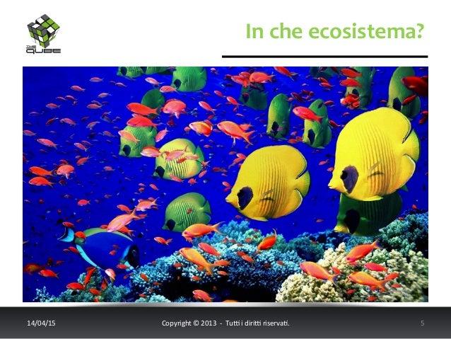 In  che  ecosistema?   14/04/15   Copyright  ©  2013    -‐    Tu6  i  diri6  riserva<.    ...