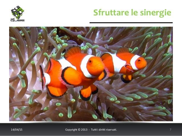Sfruttare  le  sinergie   14/04/15   Copyright  ©  2013    -‐    Tu6  i  diri6  riserva<.   ...