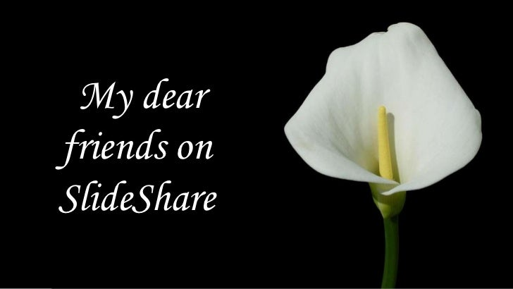 My dear friends on SlideShare