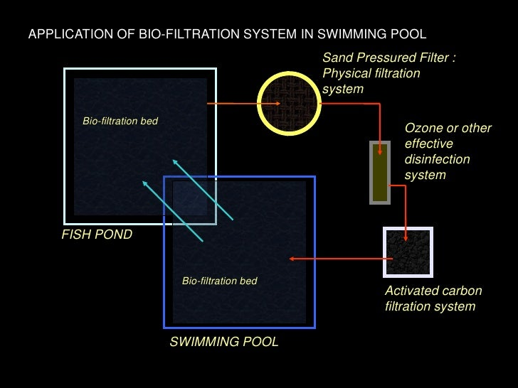 Swimming Pool Co2 Systems : A natural approach to garden pond management