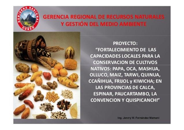 """PROYECTO: """"FORTALECIMIENTO DE LAS CAPACIDADES LOCALES PARA LA CONSERVACION DE CULTIVOS NATIVOS: PAPA, OCA, MASHUA, OLLUCO,..."""