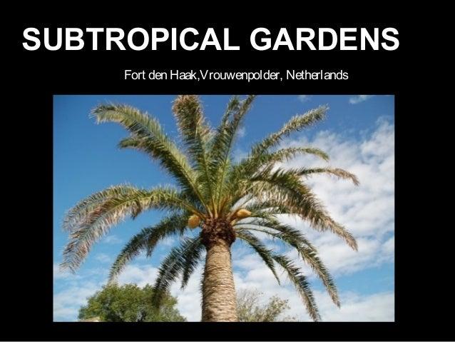 Fort den Haak,Vrouwenpolder, Netherlands SUBTROPICAL GARDENSSUBTROPICAL GARDENS