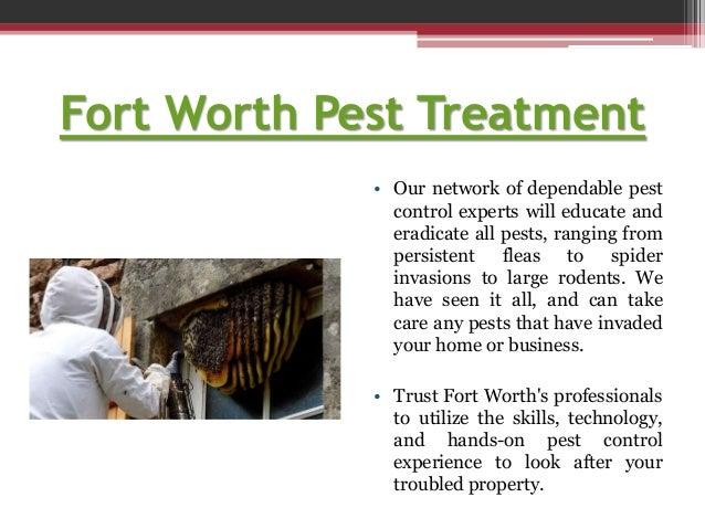 Fort worth pest service Slide 2