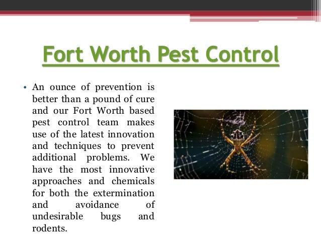 Fort worth pest service Slide 3