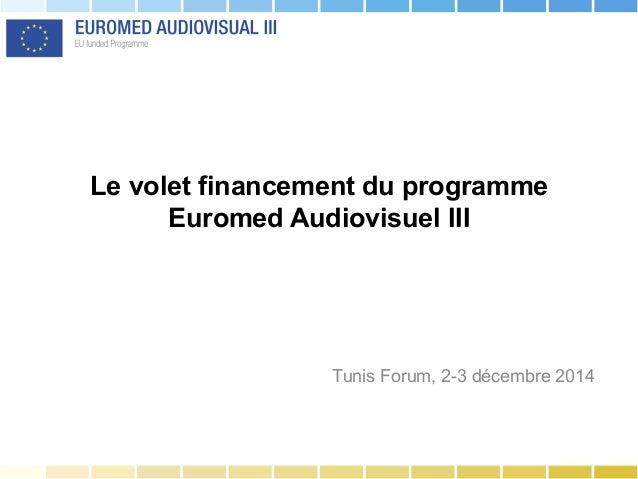 Le volet financement du programme Euromed Audiovisuel III Tunis Forum, 2-3 décembre 2014