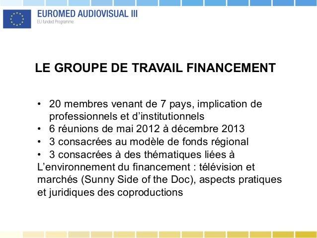 LE GROUPE DE TRAVAIL FINANCEMENT • 20 membres venant de 7 pays, implication de professionnels et d'institutionnels • 6 r...
