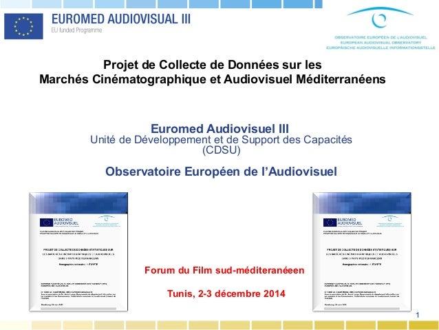 1 Euromed Audiovisuel III Unité de Développement et de Support des Capacités (CDSU) Observatoire Européen de l'Audiovisuel...
