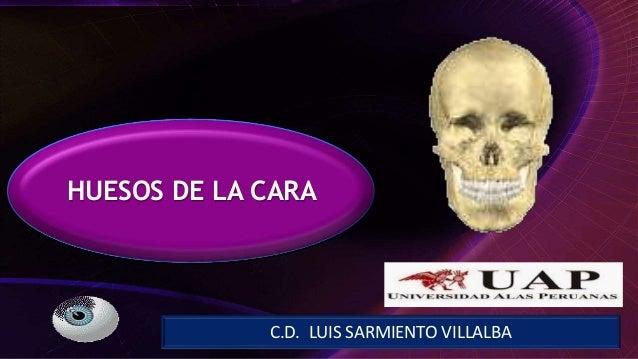 C.D. LUIS SARMIENTO VILLALBA HUESOS DE LA CARA