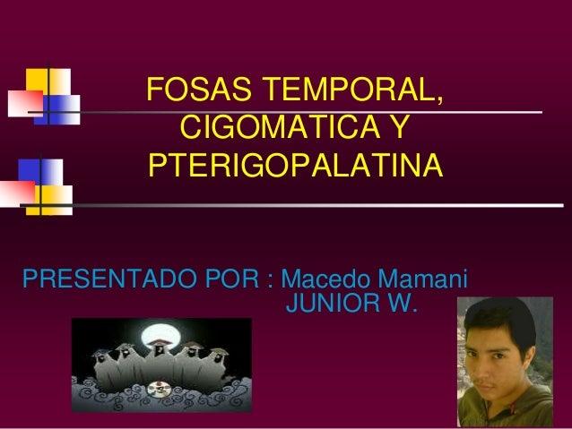 FOSAS TEMPORAL, CIGOMATICA Y PTERIGOPALATINA  PRESENTADO POR : Macedo Mamani JUNIOR W.