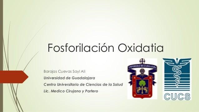 Fosforilación Oxidatia Barajas Cuevas Sayl Ali Universidad de Guadalajara Centro Universitario de Ciencias de la Salud Lic...