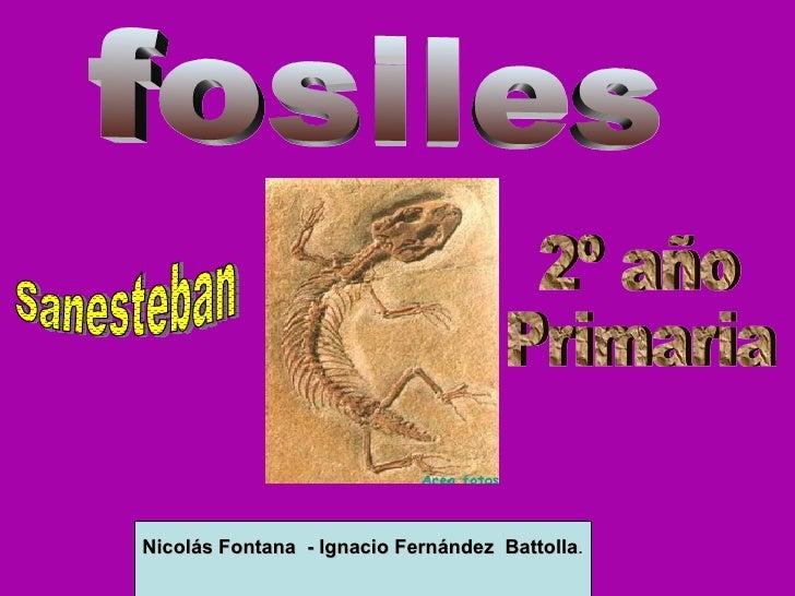 fosiles Nicolás Fontana  - Ignacio Fernández  Battolla . 2º año  Primaria Sanesteban