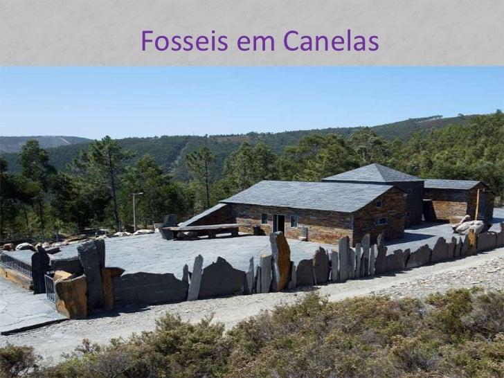 Fosseis em Canelas