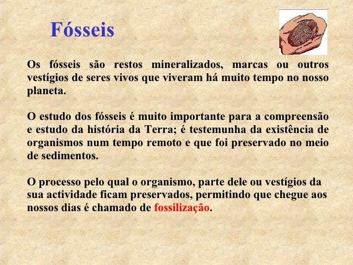 Fósseis Os fósseis são restos mineralizados, marcas ou outros vestígios de seres vivos que viveram há muito tempo no nosso...