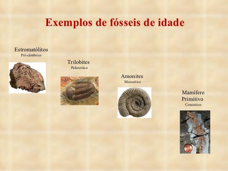 Exemplos de fósseis de idade Estromatólitos Pré-câmbrico Trilobites  Paleozóico Amonites  Mesozóico Mamífero Primitivo  Ce...