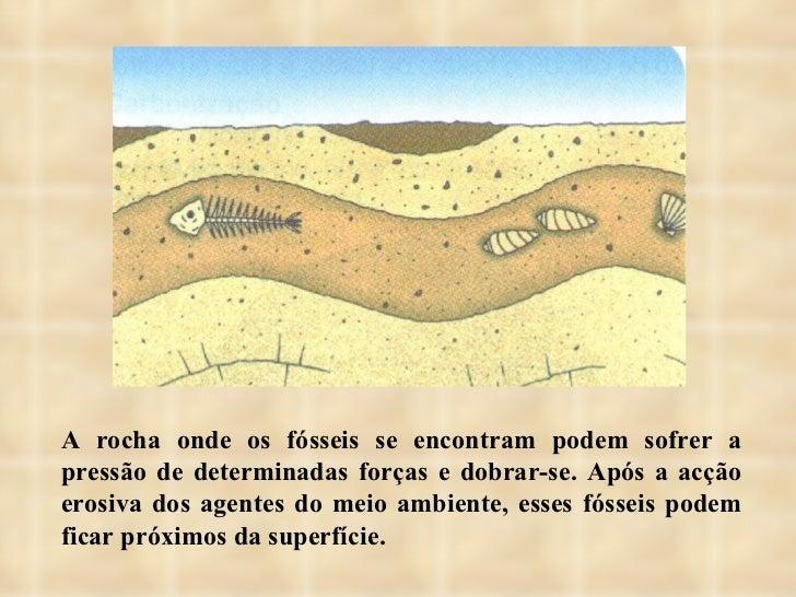 A rocha onde os fósseis se encontram podem sofrer a pressão de determinadas forças e dobrar-se. Após a acção erosiva dos a...