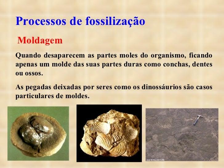 Processos de fossilização  Moldagem Quando desaparecem as partes moles do organismo, ficando apenas um molde das suas par...