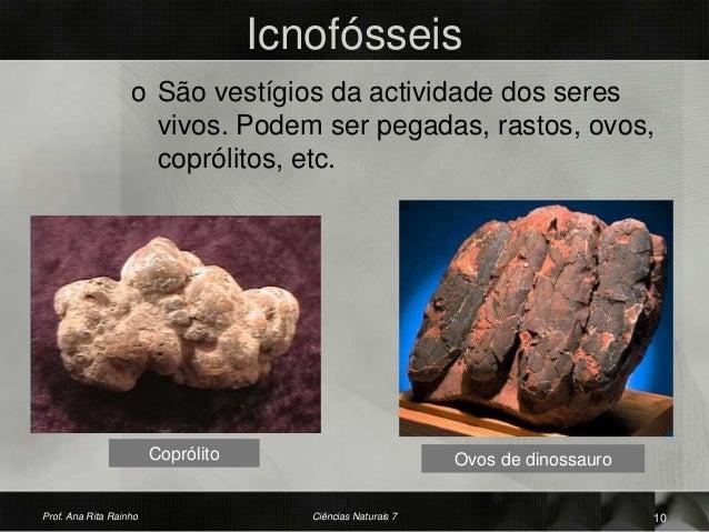 Icnofósseis o São vestígios da actividade dos seres vivos. Podem ser pegadas, rastos, ovos, coprólitos, etc. Coprólito Ovo...