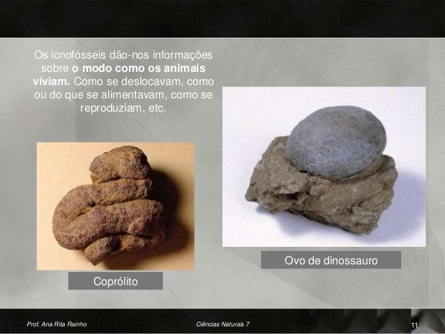Coprólito Ovo de dinossauro Prof. Ana Rita Rainho 11Ciências Naturais 7 Os icnofósseis dão-nos informações sobre o modo co...