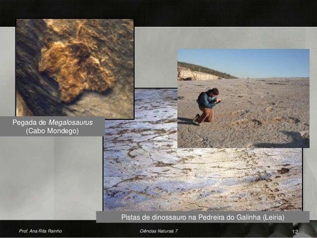Pegada de Megalosaurus (Cabo Mondego) Pistas de dinossauro na Pedreira do Galinha (Leiria) Prof. Ana Rita Rainho 12Ciência...