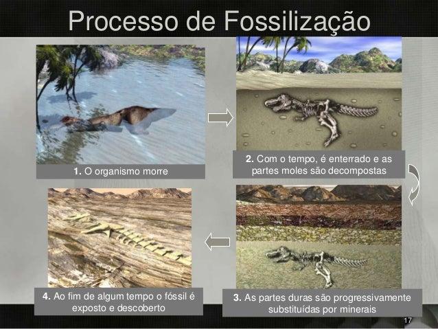 Processo de Fossilização 1. O organismo morre 2. Com o tempo, é enterrado e as partes moles são decompostas 3. As partes d...
