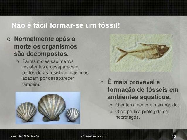 Não é fácil formar-se um fóssil! o Normalmente após a morte os organismos são decompostos. o Partes moles são menos resist...