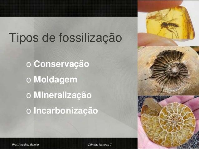 Tipos de fossilização o Conservação o Moldagem o Mineralização o Incarbonização Prof. Ana Rita Rainho 20Ciências Naturais 7