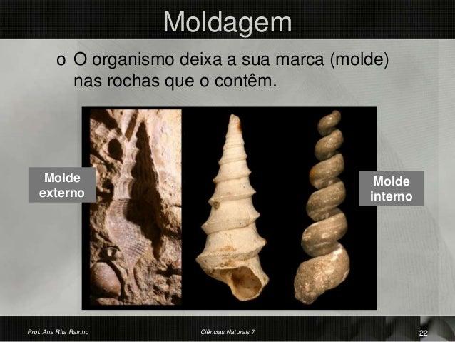 Moldagem o O organismo deixa a sua marca (molde) nas rochas que o contêm. Molde interno Prof. Ana Rita Rainho 22Ciências N...