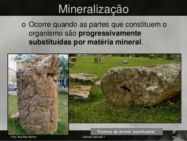 Mineralização o Ocorre quando as partes que constituem o organismo são progressivamente substituídas por matéria mineral. ...