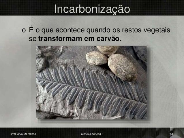 Incarbonização o É o que acontece quando os restos vegetais se transformam em carvão. Prof. Ana Rita Rainho 34Ciências Nat...