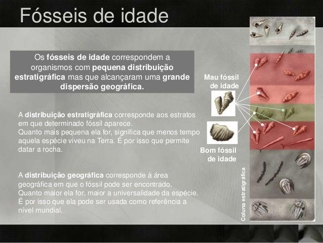 Bom fóssil de idade Mau fóssil de idade Colunaestratigráfica Os fósseis de idade correspondem a organismos com pequena dis...