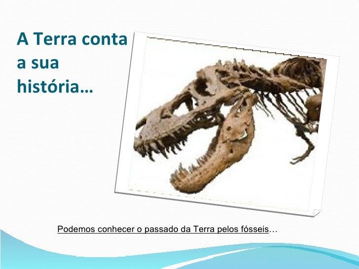 A Terra conta a sua história… Podemos conhecer o passado da Terra pelos fósseis …