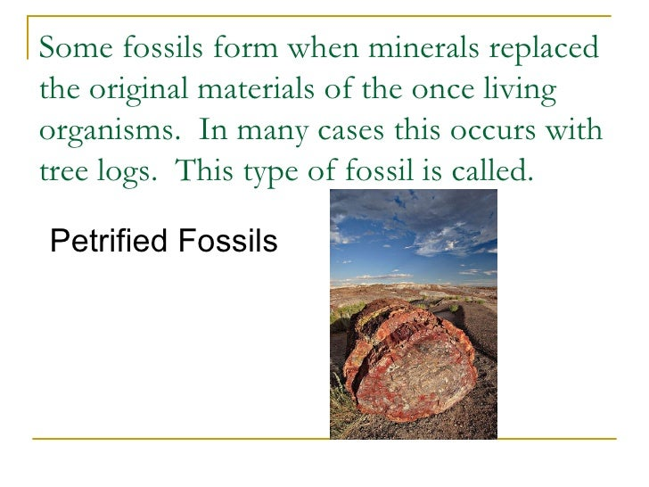 Fossil Formation Slide3