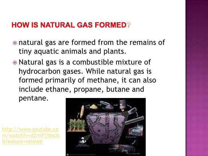 Oil And Natural Gas Primarily Formed From The Remains Of