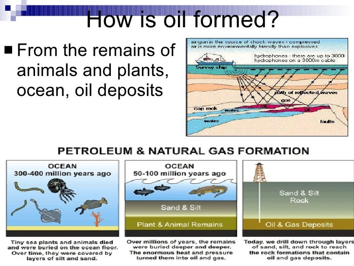 Oil Natural Gas And Coal Form From