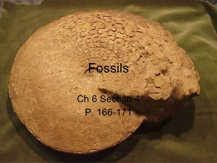 Fossils Ch 6 Section 4 P. 166-171