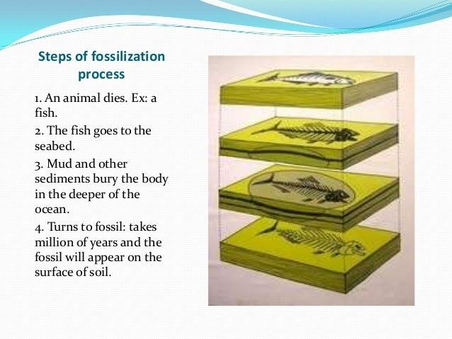 Full of fish dating website 8