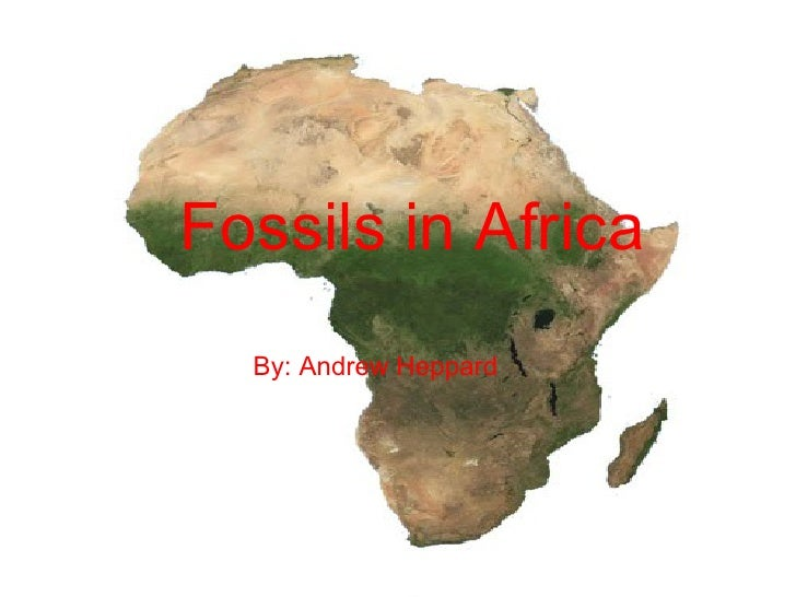 Fossils in Africa By: Andrew Heppard Fossils in Africa By: Andrew Heppard